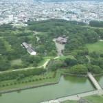 函館出張 番外編② 台風のため東京で足止め(泣)
