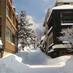 大山寺周辺の雪景色